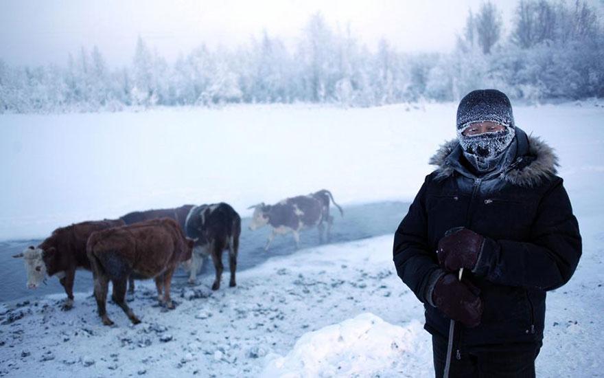 cel mai rece sat de pe pamant 4